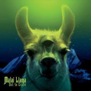 "The Malai Llama ""Out to Graze"" Album Cover"